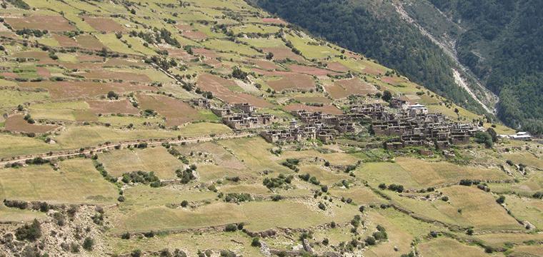 ghyaru